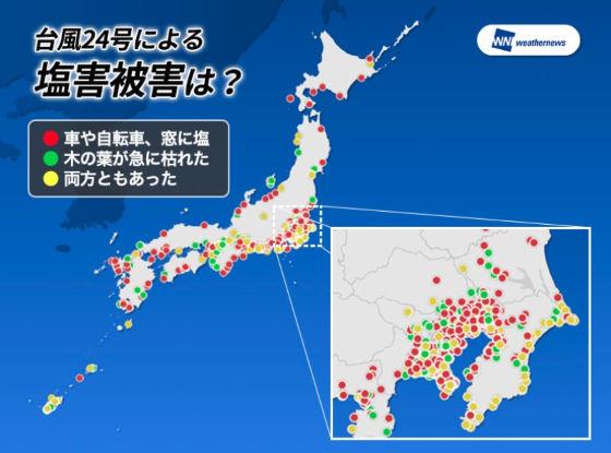 台風の塩害1